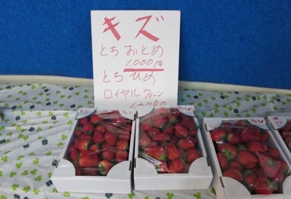 ichigo-gyoza11