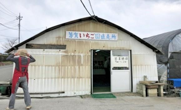 ichigo-gyoza2