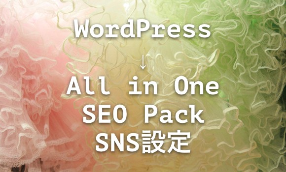 wp-all-in-one-seo-sns