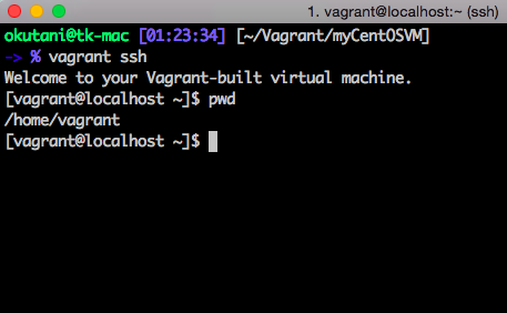 vagrant-start-web-server