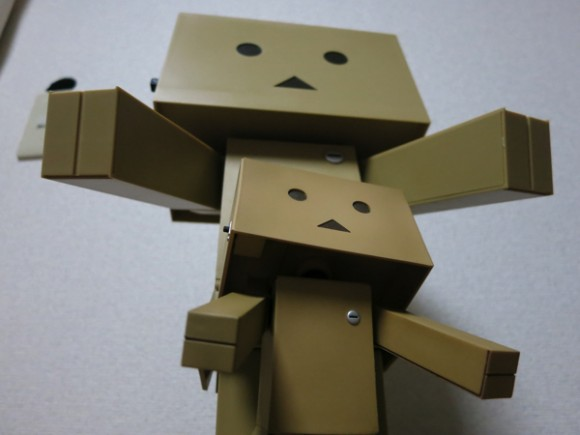 big-danboard12