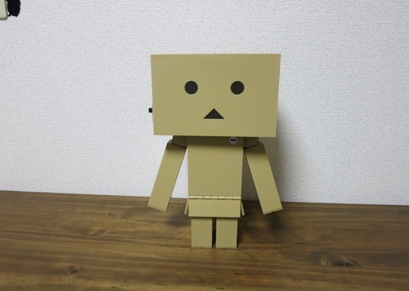 big-danboard4