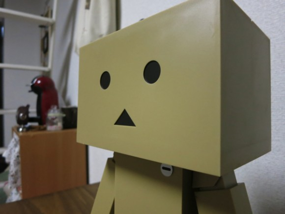 big-danboard6