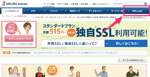 sakura-server3